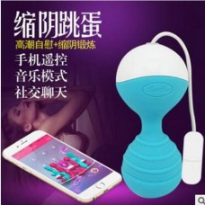 Smart APP Waterproof Wireless Remote Control Vibrator